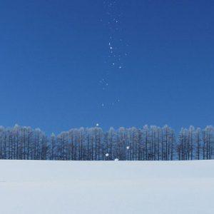 冬は「閉蔵」の季節